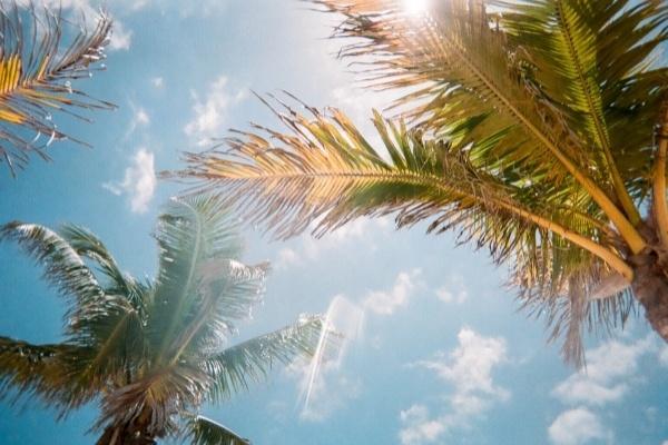 Weather in Arcadia, FL